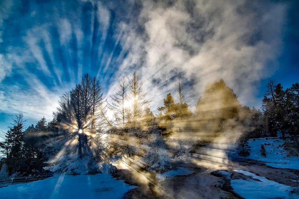 Sunce prolazi kroz snežne krošnje